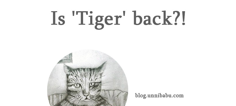 is my pet cat tiger back?